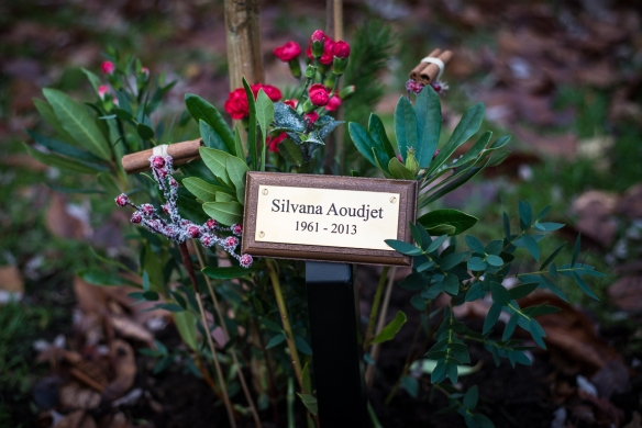 memorial_plaque_for_silvana_101213_001