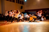 music_dance_and_drama_performance_2015-6